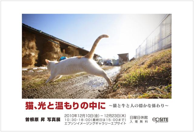 Sone_photo